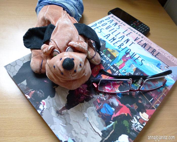 Un chien doudou de voyage sur un livre d'aventures