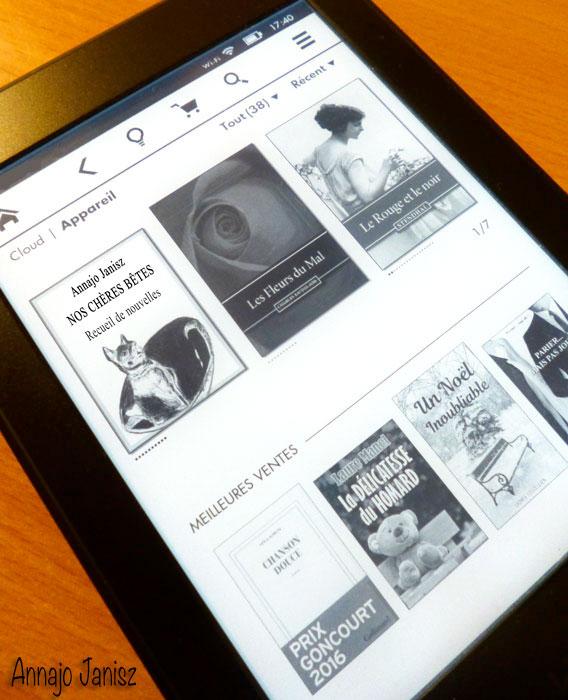 Liseuse électronique pour lire des livres numériques en français
