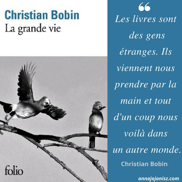 Plus belle citation du livre La grande vie de Christian Bobin qui est chroniqué et résumé sur le blog de l'écrivaine Annajo Janisz