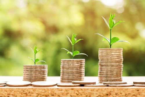pousse de plante sur de l'argent