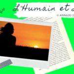 Femme regardant un coucher de soleil, illustration de la vidéo de l'écrivain poète Annajo Janisz