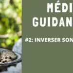 Illustration de la vidéo de méditation guidée d'Annajo Janisz dont le titre est Inverser son regard